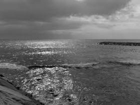 """Immagine di Fragranza """"Winter sea"""""""