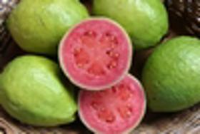 Picture of Fragranza Guava e cocco