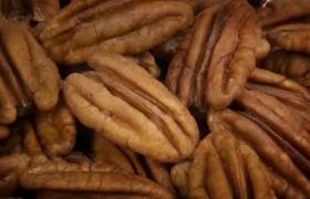 Picture of Pecan nut oil