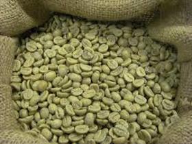 "Picture of Extracto glicólico ""café verde"""