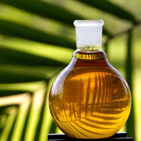 Picture of Aceite de palma