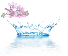 """Immagine di Acqua distillata """"Malva"""""""