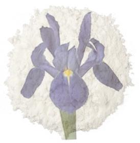 """Immagine di Fragranza """"Iris & talco"""""""