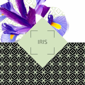"Picture of Ambience Parfum Classic ""Iris"""