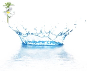 """Picture of Acqua distillata """"Eufrasia"""""""