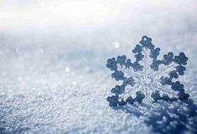 Immagine di Fragranza Ghiaccio e neve