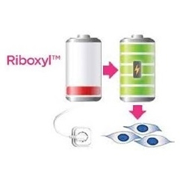 Picture of Riboxyl™